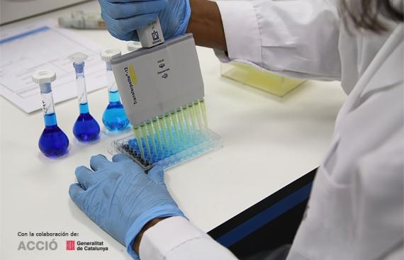 APSA R&D Proyecto efectista