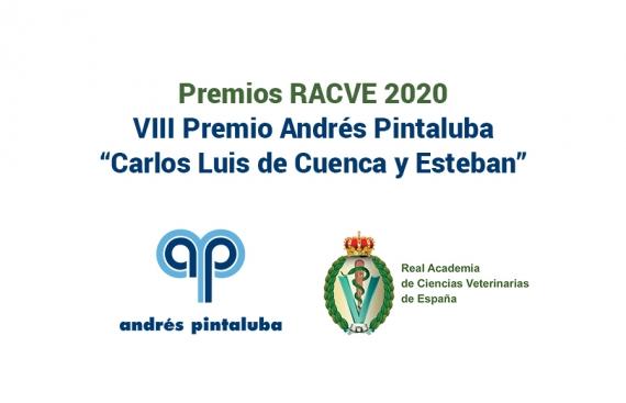 Premio Andrés Pintaluba